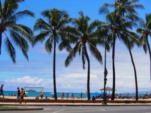 それでもまだハワイに訪れます