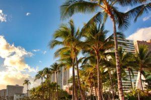 ハワイの今後(5月17日)