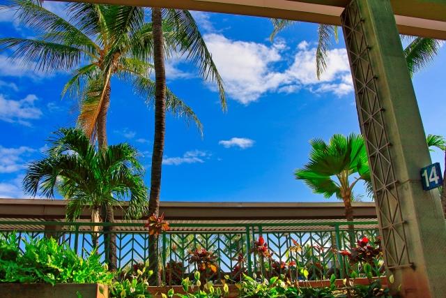 ハワイ 9月1日迄観光再開延期へ