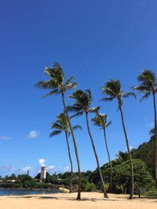 """ハワイは、 """"travel-safely bubbles"""" 「安全な旅行の輪」で、旅行可能に?!"""