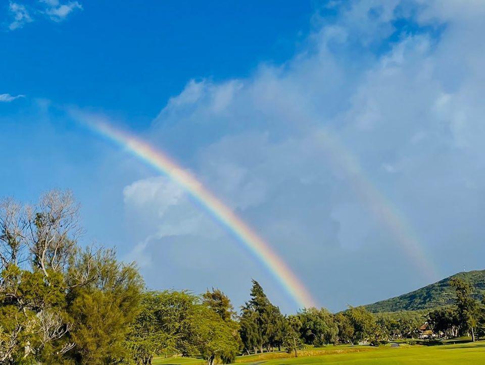 ハワイは秋まで旅行が再開されない場合、多くのホテル経営者が閉鎖か