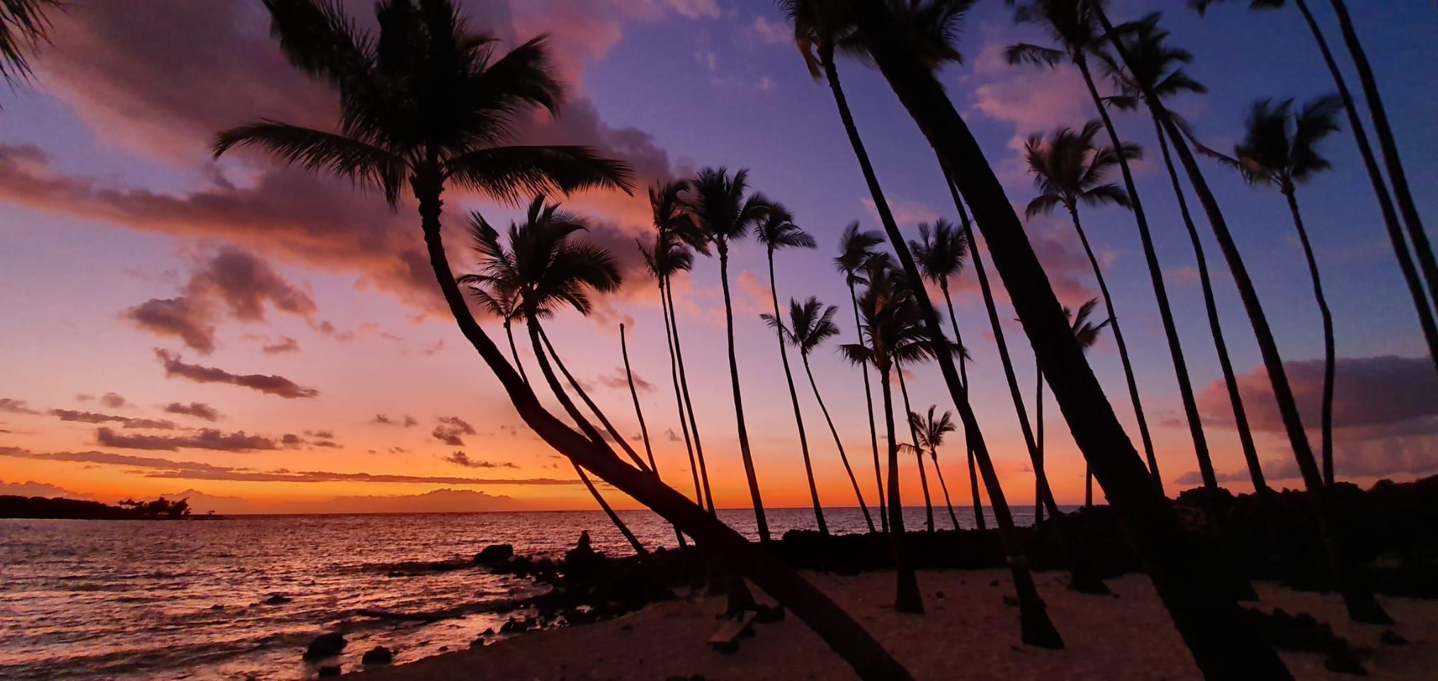 ハワイ 3桁の新規感染が連続11日目で、1日の症例数は300件が目の前