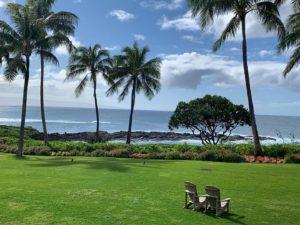 ハワイはフリーウェイを使用してコロナ検査