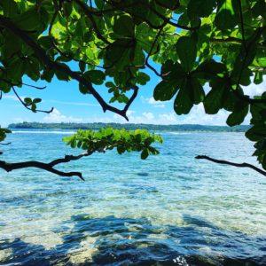ハワイの新しい取り組み「リゾートバブル」