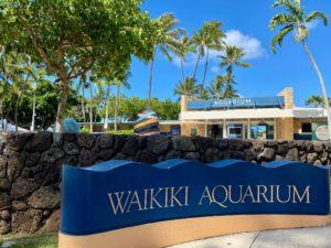 ハワイ ワイキキ水族館が無期限の閉鎖に