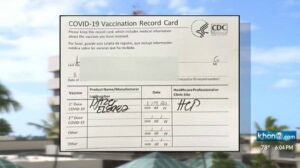 ハワイ トラベルパスポートの検証プロセスに関する懸念