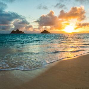 ハワイ ついに5月11日から検疫・到着後の検査無しで旅行可能に