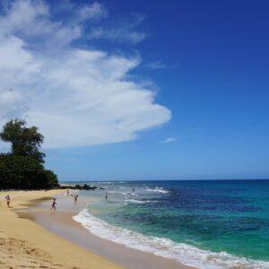 ハワイ ワクチン接種を受けた島間旅行者に検疫免除を付与します