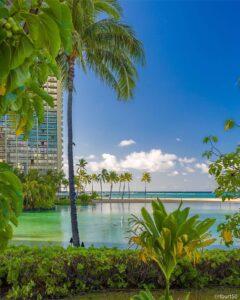 ハワイ旅行や観光がヒートアップするにつれ、ホテルの価格は上昇