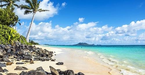 ハワイ オアフ島の制限緩和まで「もうすぐです」