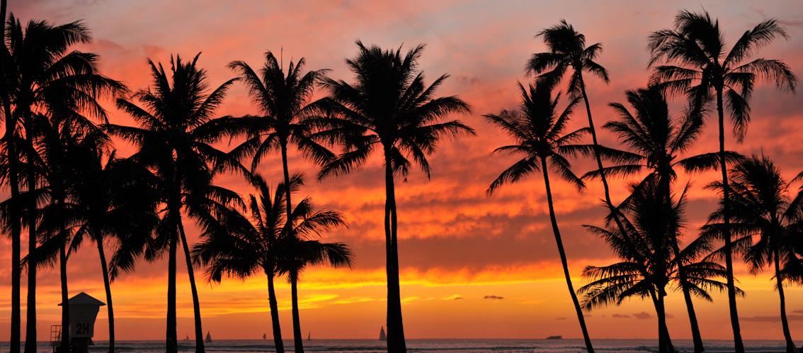 ハワイ デルタバリアントのコミュニティへの広がりを確認しています
