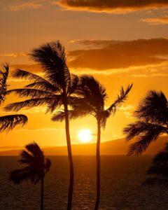制限を検討しているハワイ州知事は、COVIDの急増は「予防可能」だったと言います