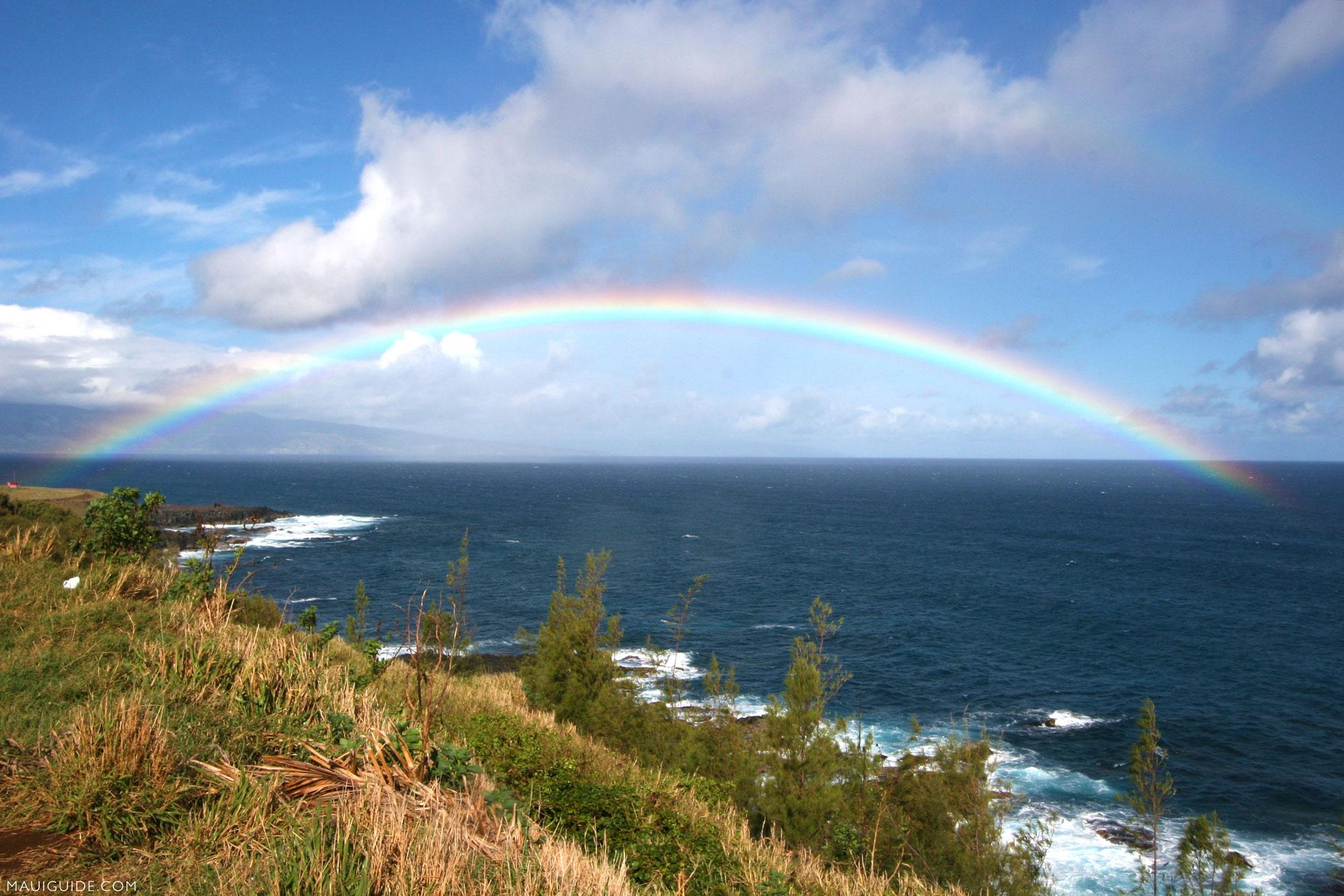 ハワイのマウイ島、カウアイ島、ハワイ島にもCOVID-19制限緩和を期待